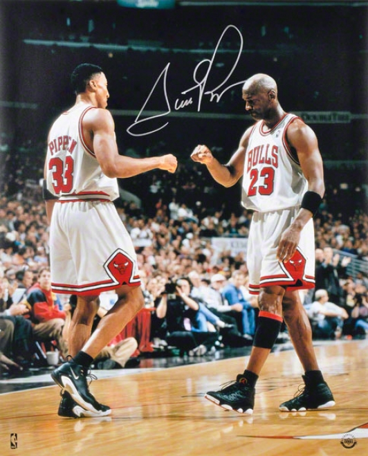 Scottie Pippen Autographed Photograph  Details: Chicago Bulls, 16x20