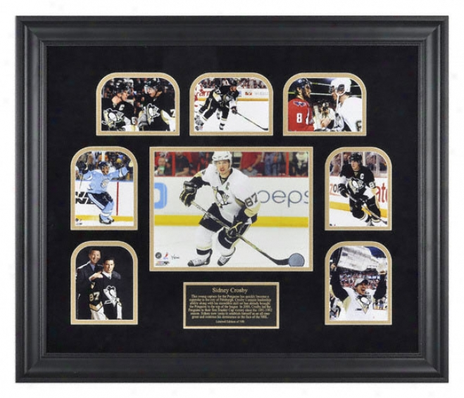 Sidney Crosby Pittsburgh Penguins 2009 Stanley Cup Championship Multi Photo Collectible