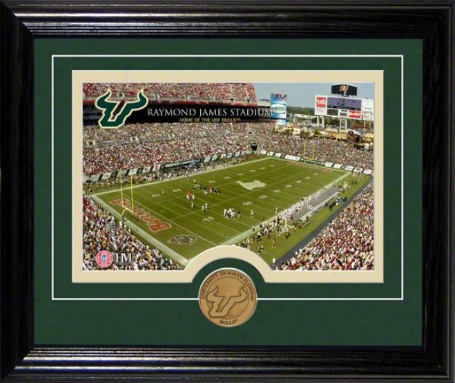 South Florida Bulls Raymond James Stadium Desktop Photograph