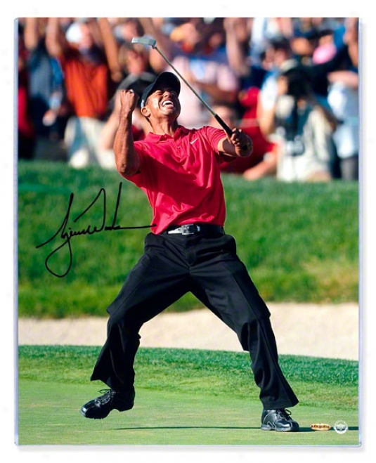 Tiger Woods Autographed 2008 Us Open 16x20 Celebration Photograph