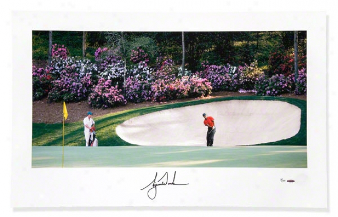 Tiger Woods Autographed Azalea #13 40x25 Panoramic Photograph