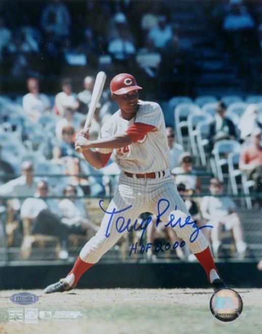 Tony Perez Cincinnati Reds - Swing - 8x10 Autographed Photo