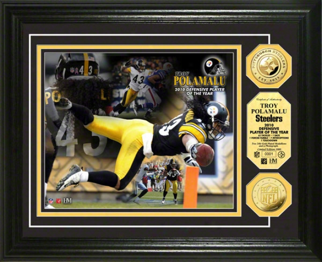 Troy Polamalu Photo Mint: Pittsburgh Steelers 2010 Defensive Poy 24kt Gold Coin