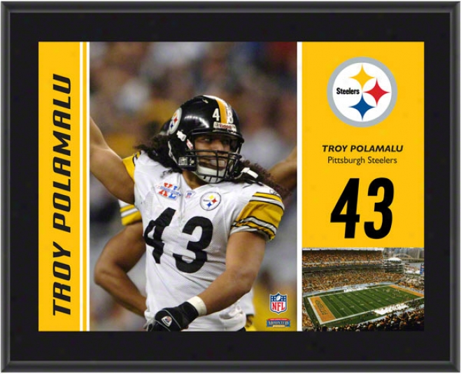 Troy Polamalu Plaque  Details: Pittsburgh Steelers, Sublimated, 10x13, Nfl Brooch