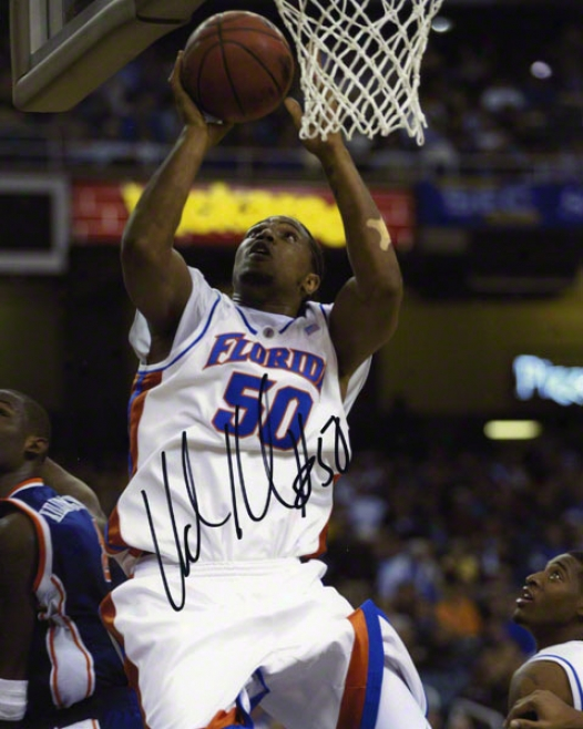 Udonis Haslem Florida Gators Auotgraphed 8x10 Lay Up Photo