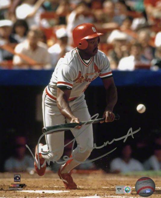 Vince Coleman Autographed Photograph  Details: St. Louis Cardinals, 8x10