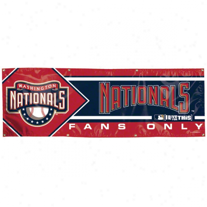 Washington Nationals 2x6 Vinyl Flag
