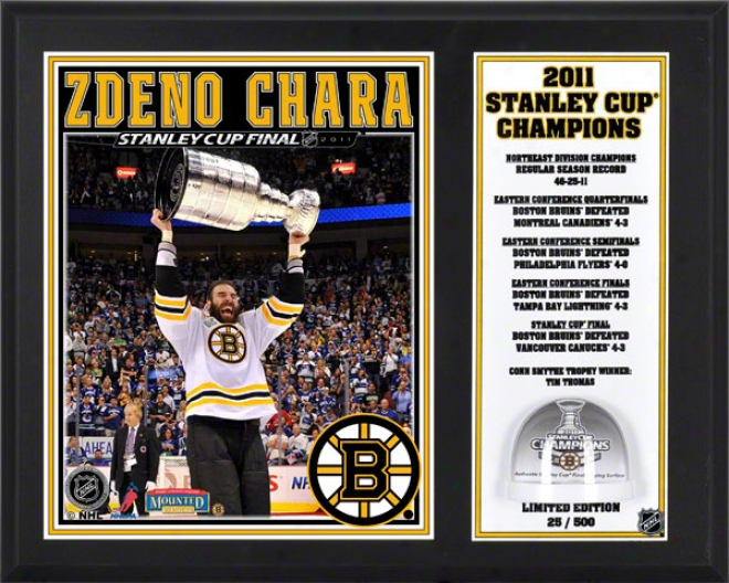 Zdeno Chara Sublimated 12x15 Plaque  Details: Boston Bruins, 2011 Nh Stanley Cup Champions, Game Used Ice