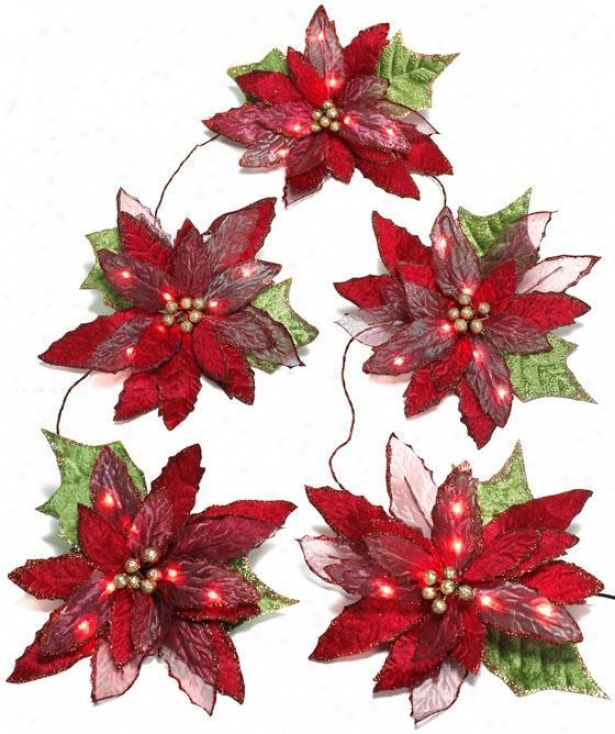 6' Pre-lit Poinsettia Garland - 6', Red