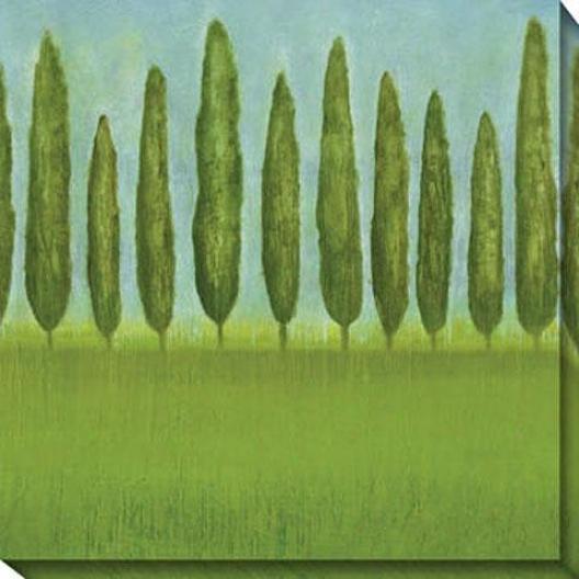 Afternoon Deilght Ii Canvas Wall Art - Ii, Green