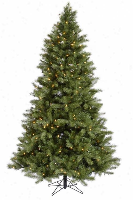 """""""albany Spruce Tree - 102""""""""hx60""""""""w, White"""""""
