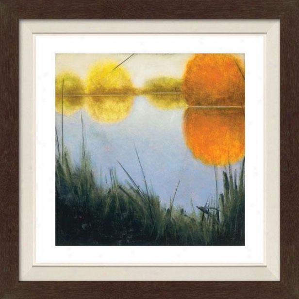 Autumn Marsh Ii Framed Wall Art - Ii, Fltd Espresso