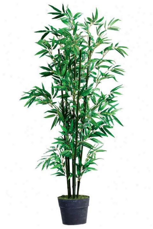 """bamboo Topiary With Tin Base - 63""""h, Blacl"""