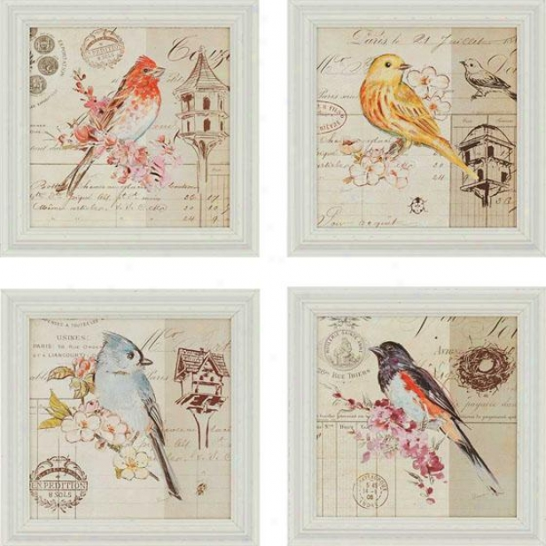 Bird Sketch Wall Ar t- Set Of 4 - Set Of Four, Ivory