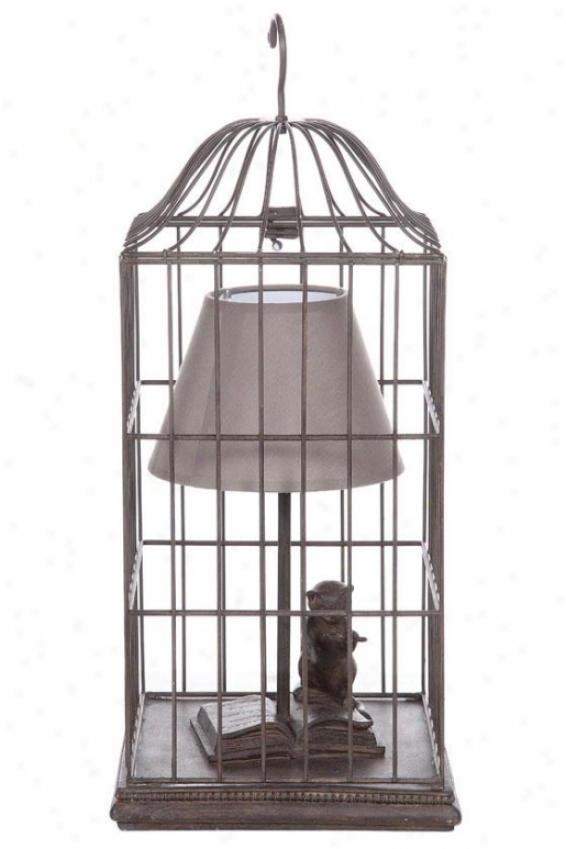 """""""birdcage Lamp - 21""""""""hx9.5""""""""round, Pumpkin"""""""