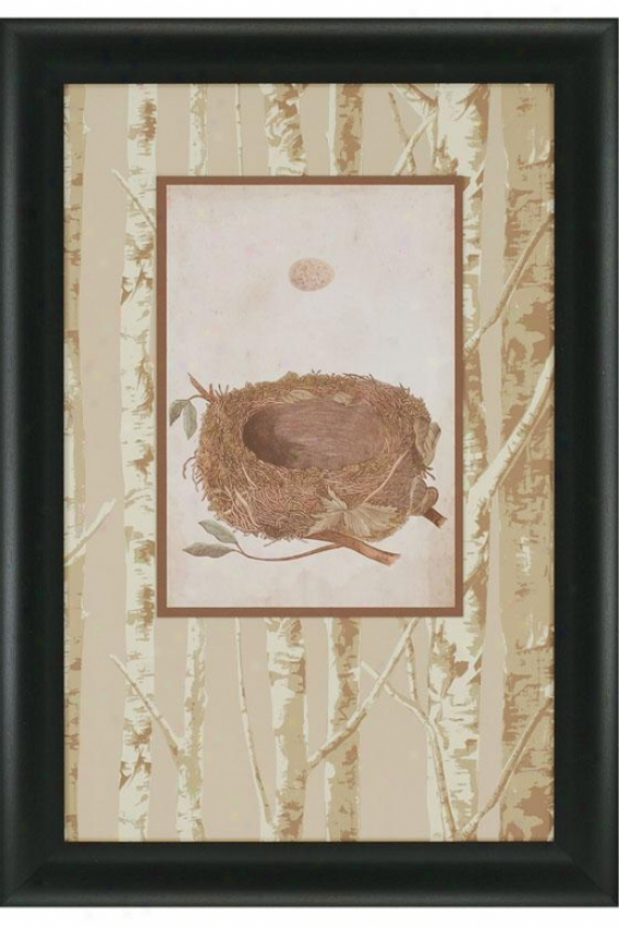 Birds Nest Study I Wall Art - Ii, Ivory