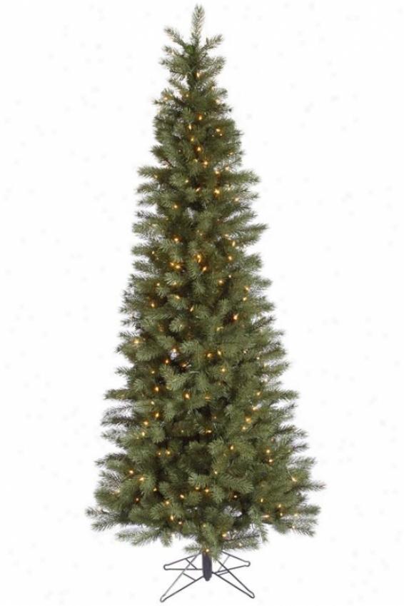 """""""blue Albany Spruce Tree - 90""""""""hx38""""""""w Slim, White"""""""