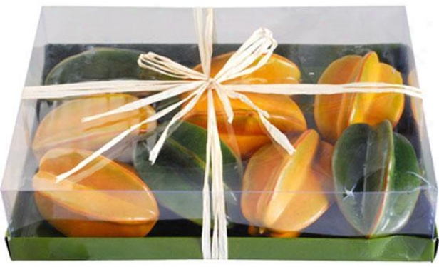 Boxed Fruit - Set Of 9 - 9 Piece, Star Fruit