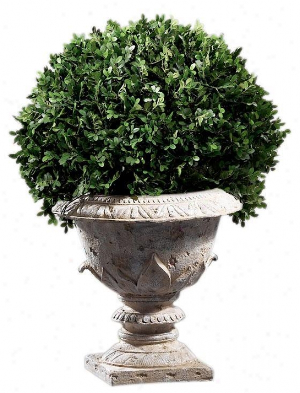 """boxwood Foliage Ornamental With Resin Urn Base - Single 30""""h, Resin Base"""