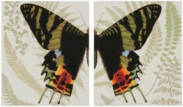 """""""bitterfly Symmetry - Set Of 2 - 24""""""""hx20""""""""w, Purple"""""""