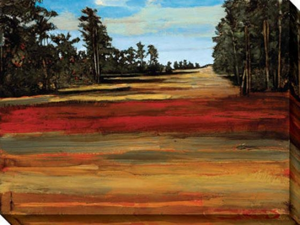 """""""calm Canvas Wall Art - 48""""""""wx36""""""""h, Red"""""""
