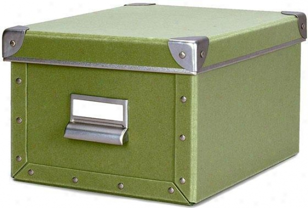 """cargo Naturals Media Box - 6""""hx8""""w, Sage"""