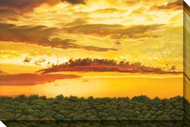 """dragon Cloud Canvas Wsll Ar - 48""""hx32""""w, Yellow"""