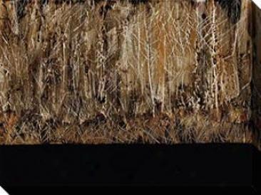 Dreamer Ii Canvas Wall Art - Ii, Dark