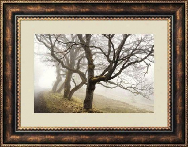 """early Morning Still Framed Wall Art - 28""""hx36""""w, Brown"""