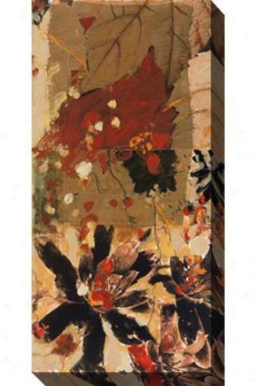 Earth Chant Iii Canvas Wall Art - Iii, Brown