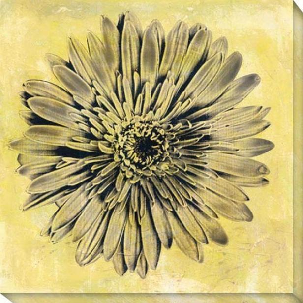 Evoke I Canvas Wall Art - I, Yellow