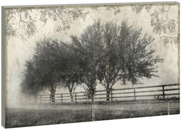 Farmside Beauty Wall Art - 36hx54wx1.5d, Black