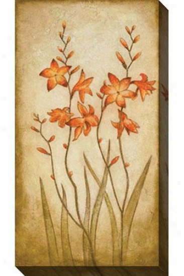 Fire Plant I Canvas Wall Art - I, Crema