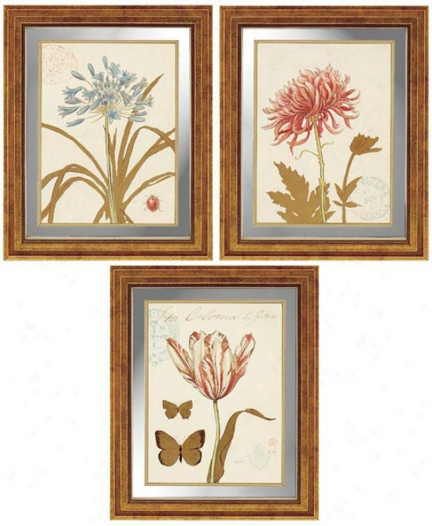Fleurs Wall Art - Regular Of 3 - Set Of 3, Ivory