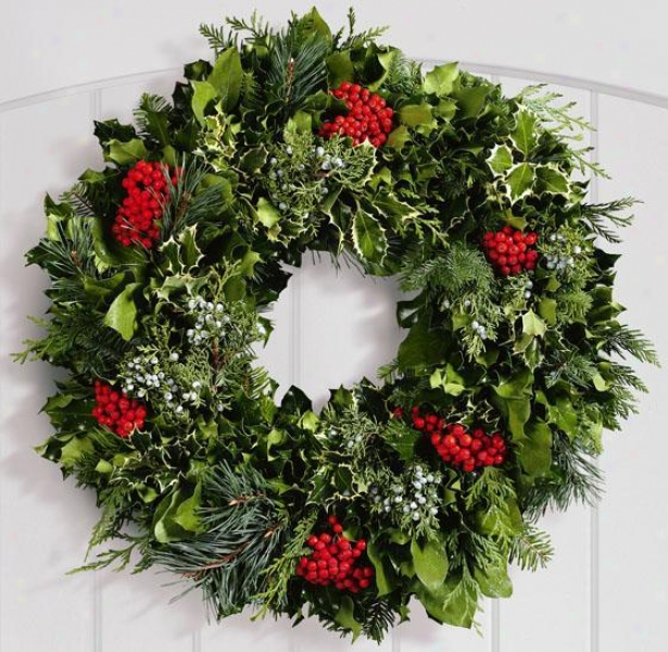 """fresh Greens Life Magazine Wreath - 36"""", Green"""