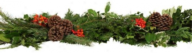 Fresh Holly Deluxe Holly And Greens Garland - 6', Green