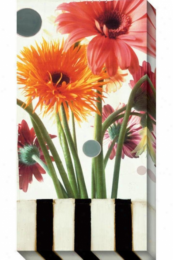 Gerber Daisies I Canvas Wall Aft - I, White