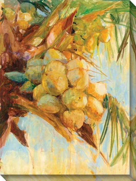 """""""golden Coconuts Canvas Wall Art - 36""""""""gx48""""""""w, Yellow"""""""