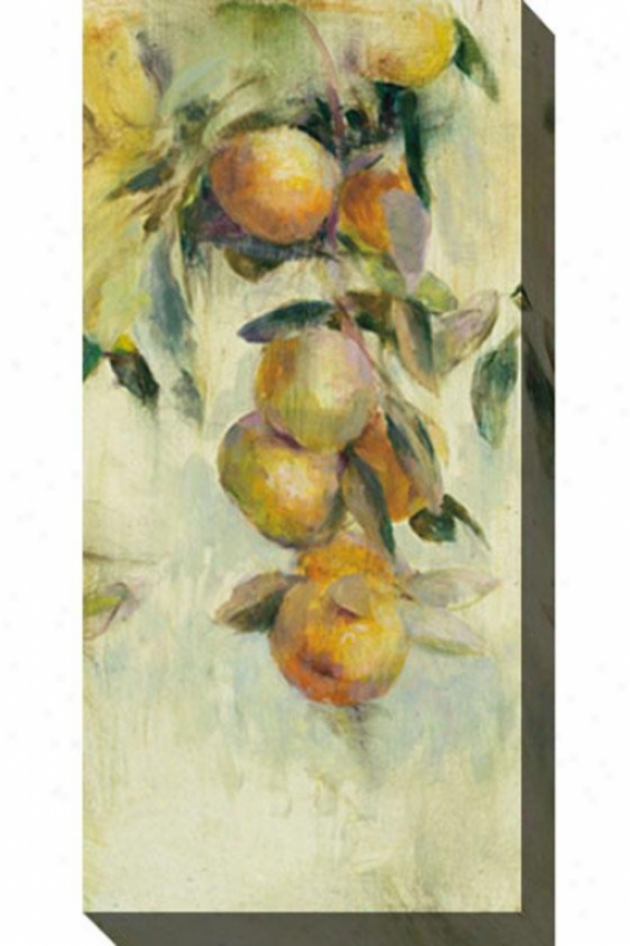Golden Fruit Study I Canvas Wall Art - I, White