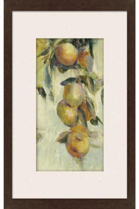 Golden Fruit Study I Framed Wall Art - I, Matted Espresso