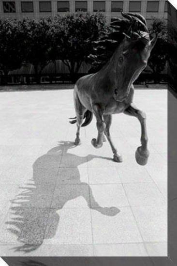 """horse Whisperer Canvas Wall Art - 32""""hx48""""w, Black"""