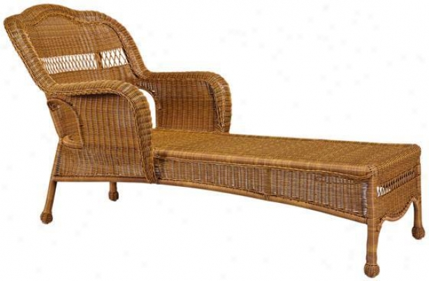 Indoor/outdoor Chaise Lounges - Sahara Chaise Lounge