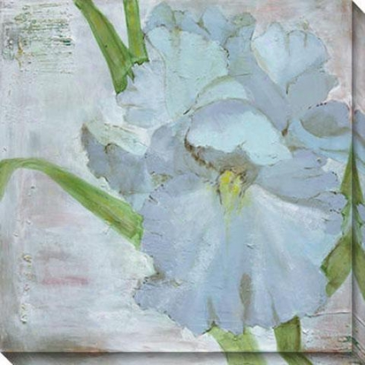 """iris In Periwinkle Canvas Wall Art Ii - 40""""hx40""""w, White"""