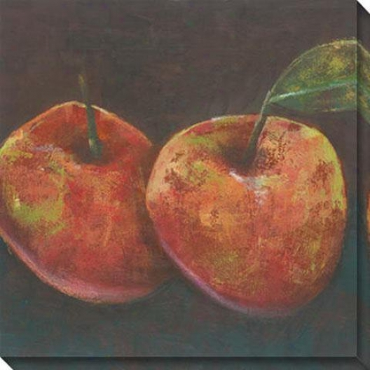 """juniper Pomme Canvas Wall Art - 40""""hx40""""w, Orange"""