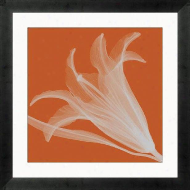 """lily Silver Framed Wall Art - 24""""hx24""""w, Mtte Bk Cube Fm"""