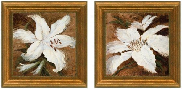 Lily Whites Framed aWll Art - Set Of 2 - Set Of Two, White