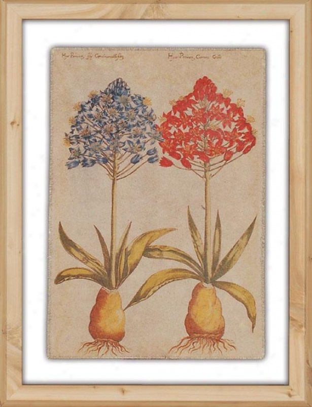 """linen Botanicals - 21""""hx16""""w, Iii"""