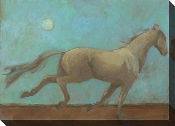Midnite Run I Canvas Wall Art - I, Blue