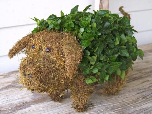 """mossed Ivy Pig - 9""""hx11""""w, Green"""