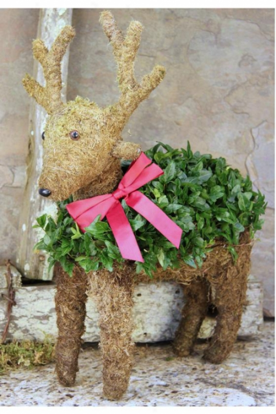 """mossed Ivy Reindeer - 14""""hx7""""w, Green"""